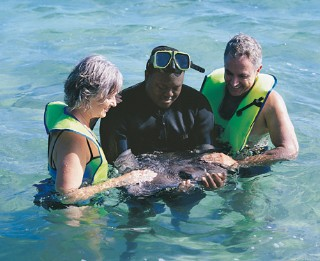 Photo of snorkelers with sting ray at Half Moon Cay goes here.