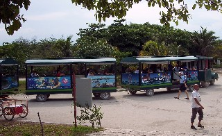 Photo of the Tulum tram goes here.
